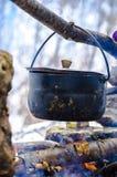 Potenciômetro da natureza no acampamento do fogo Fotografia de Stock Royalty Free