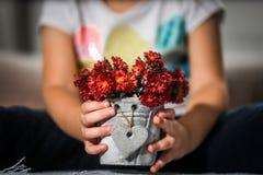 potenciômetro das flores em suas mãos imagens de stock royalty free