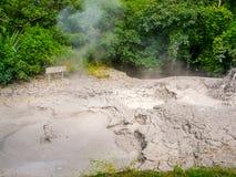 Potenciômetro de ebulição da lama Fotos de Stock Royalty Free