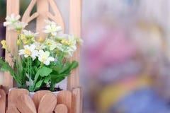 Potenciômetro de flor colorido Foto de Stock Royalty Free