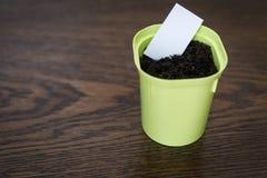 Potenci?metro de flor com terra e Livro Branco para escrever a data e o nome da planta imagens de stock