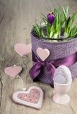 Potenciômetro de flor do açafrão e decorações cor-de-rosa da Páscoa na madeira Fotos de Stock Royalty Free