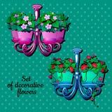 Potenciômetro de flor dois com houseplants, design de interiores Fotografia de Stock