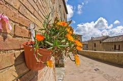 Potenciômetro de flor em uma parede de tijolo em uma das ruas de San Gimignano Imagens de Stock