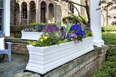 Potenciômetro de flor no pátio de entrada coberto da casa imagem de stock