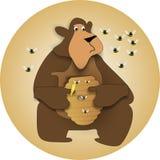 Potenciômetro do mel de Beary Fotografia de Stock