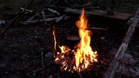 Potenci?metro no fogo no acampamento video estoque