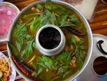 Potenciômetro quente quente e picante do reforço de carne de porco com ervas tailandesas Imagens de Stock Royalty Free