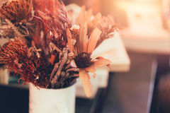 Potenciômetro secado da flor e da planta na decoração de madeira da casa da tabela Fotografia de Stock Royalty Free