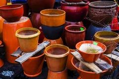 Potenciômetros coloridos da planta fotografia de stock