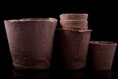 Potenciômetros da turfa para seedlings Fotos de Stock Royalty Free