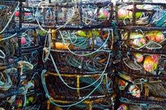 Potenciômetros de caranguejo de Oregon Fotos de Stock