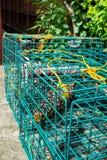 Potenciômetros de caranguejo quadrados Imagem de Stock Royalty Free