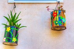 Potenciômetros de flor coloridos Fotos de Stock