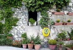 Potenciômetros de flor na rua na vila Fotografia de Stock Royalty Free