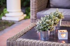 Potenciômetros de flor na tabela imagens de stock royalty free