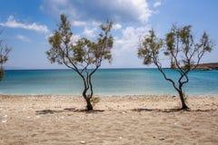 Potenciômetros de flor - Paros, Greece Fotos de Stock Royalty Free