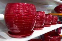 Potenciômetros de flor vermelhos Imagem de Stock Royalty Free