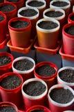 Potenciômetros de jardinagem vazios Fotos de Stock Royalty Free