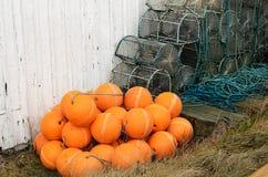 Potenciômetros de lagosta imagem de stock
