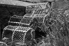 Potenciômetros de lagosta em Brigghton foto de stock royalty free