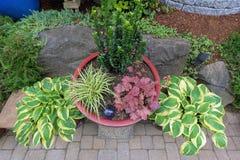 Potenciômetros do recipiente do quintal do jardim que plantam a vista superior Imagem de Stock Royalty Free