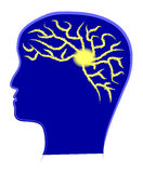 Potencia de cerebro Imagenes de archivo