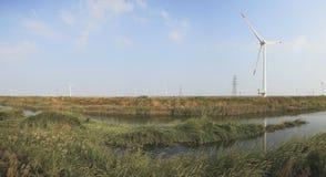 Potencia de Eco, turbinas de viento Fotografía de archivo libre de regalías