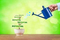 Potential growth. Business potential growth concept. Potential growth represented by plant watered by businessman stock image