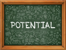 Potential - Hand Drawn on Green Chalkboard. Stock Images