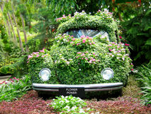 Potenza di fiore Fotografie Stock