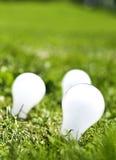 Potenza verde Fotografie Stock