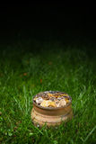 Potenziometer mit goldenen Münzen Lizenzfreies Stockfoto