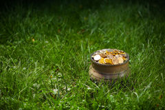 Potenziometer mit goldenen Münzen Stockbild