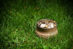 Potenziometer mit goldenen Münzen Stockfoto