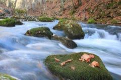 Potere del fiume di autunno Immagine Stock