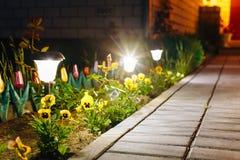Potere di Viola Flowerbed Illuminated Energy-Saving Solar di vista di notte Fotografie Stock Libere da Diritti