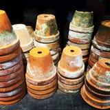Potes de arcilla cubiertos de musgo coloridos Imágenes de archivo libres de regalías