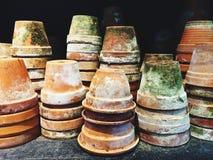 Potes de arcilla cubiertos de musgo viejos Fotos de archivo