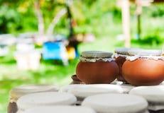 Potes de arcilla de miel Foto de archivo libre de regalías