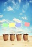 Potes de la turba con los letreros de papel en los palillos contra el cielo azul Imagen de archivo
