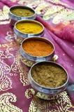 Potes indios de plata de la especia en la sari rosada del oro Fotos de archivo libres de regalías