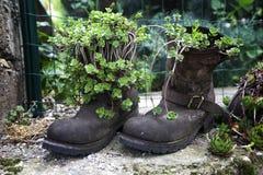 Potes o botas Foto de archivo libre de regalías
