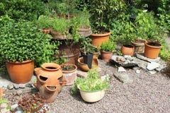 Potes y plantas Foto de archivo