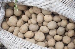 Poteto bag in srilanka market Stock Photography