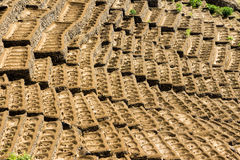 Pothole farming. Farming fields ploughed with potholes to keep the water. Santo Antao, Cape Verde Stock Images