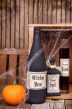 Potion bottles with pumpkins Stock Image