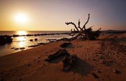Potipot Beachscape Lizenzfreies Stockfoto