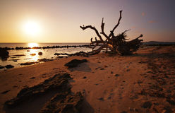 Potipot Sunrise. The sun rising over Potipot island in Zambales, Philippines Stock Photos