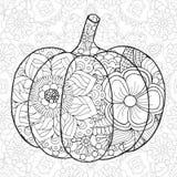 Potiron illustration stock